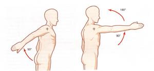 Flexión del hombro de 180º y extensión del hombro de 50º