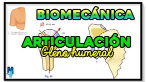 Articulación glenohumeral