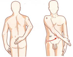 abducción del hombro de 30º
