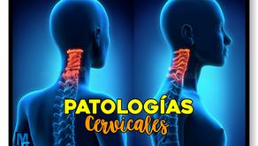 6 patologías cervicales más comunes