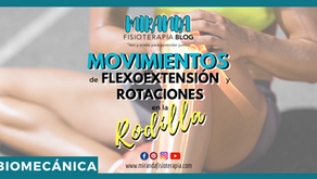 Movimiento de flexoextensión y rotación axial de la rodilla
