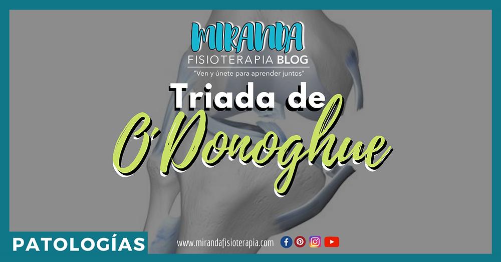 Triada de O´Donoghue - Miranda Fisioterapia Blog
