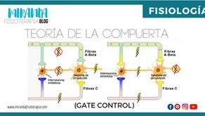 Teoría de la compuerta (Gate control)