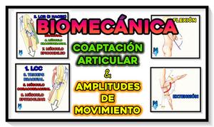 FACTORES DE COAPTACIÓN Y AMPLITUD DE MOVIMIENTO DEL CODO - MIRANDA FISIOTERAPIA BLOG