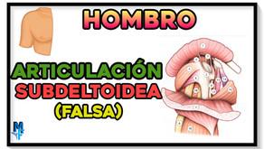 Articulación subdeltoidea del hombro (falsa)