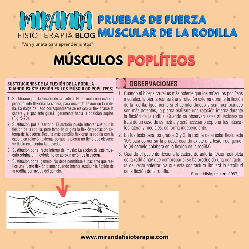 Pruebas de fuerza muscular de la rodilla: sustituciones de la flexión de la rodilla (cuando existe lesión en los músculos poplíteos)