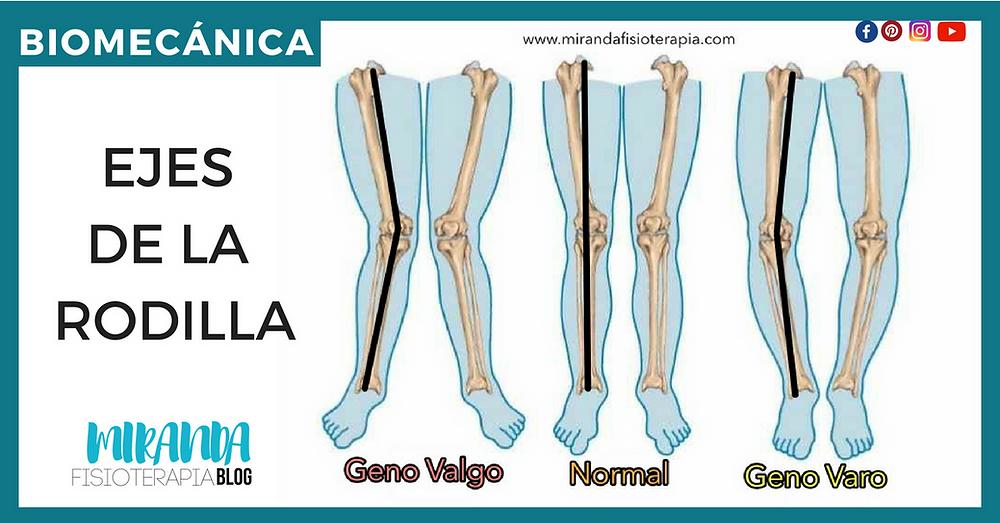 Ejes de la rodilla - biomecánica