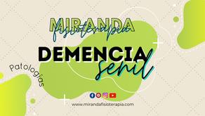 Demencia Senil: Sintomas y caracteristicas en cada fase