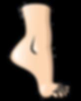 fisiología articular del tobillo