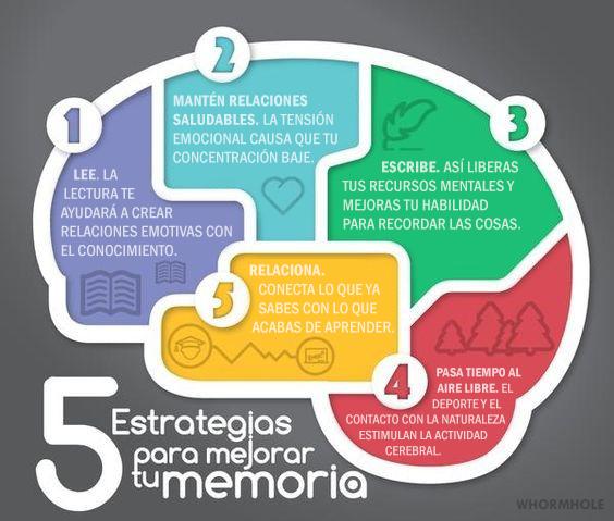 5 estrategias para memorar la memoria - miranda fisioterapia blog - consejos