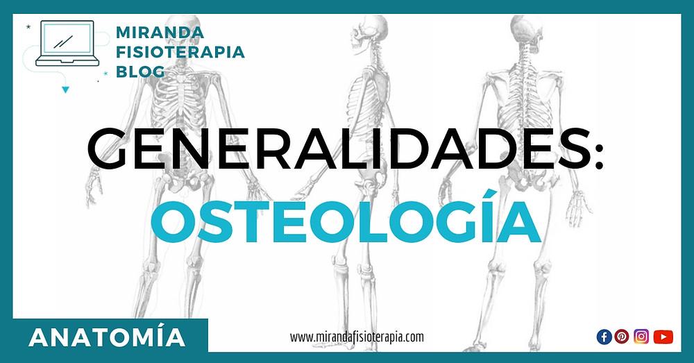 Generalidades de la osteología: miranda fisioterapia blog
