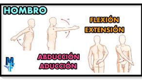 Movimientos del hombro: Flexión-extensión y abducción-aducción