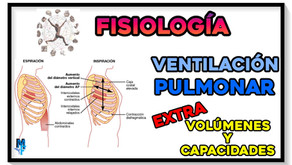 Ventilación Pulmonar: Volúmenes y capacidades pulmonares