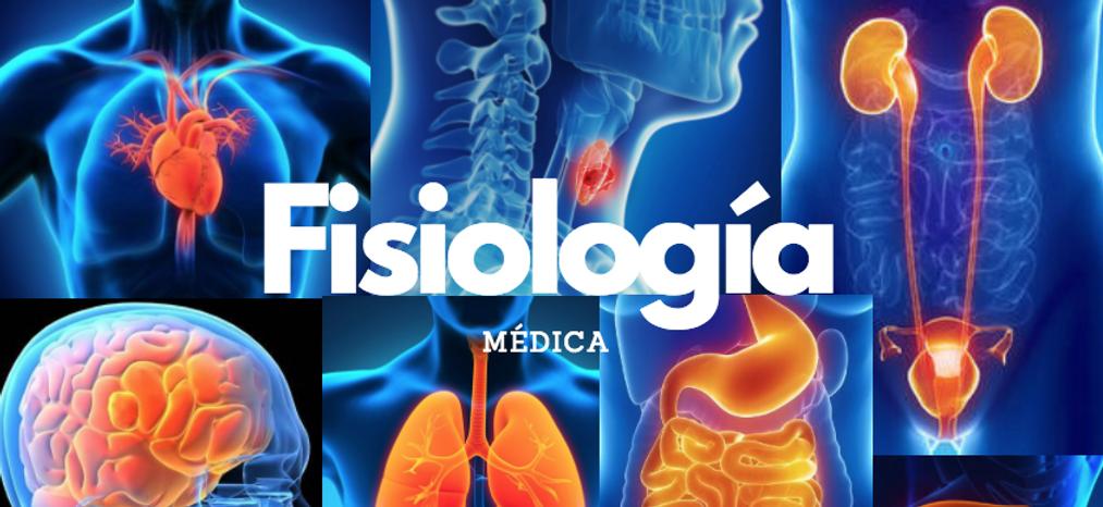 Fisiologia | Miranda Fisioterapia BLOG