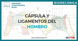 Aparato capsulo-ligamntoso del hombro - biomecánica-hombro