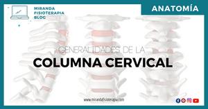 GENERALIDADES DE LA COLUMNA CERVICAL - MIRANDA FISIOTERAPIA BLOG