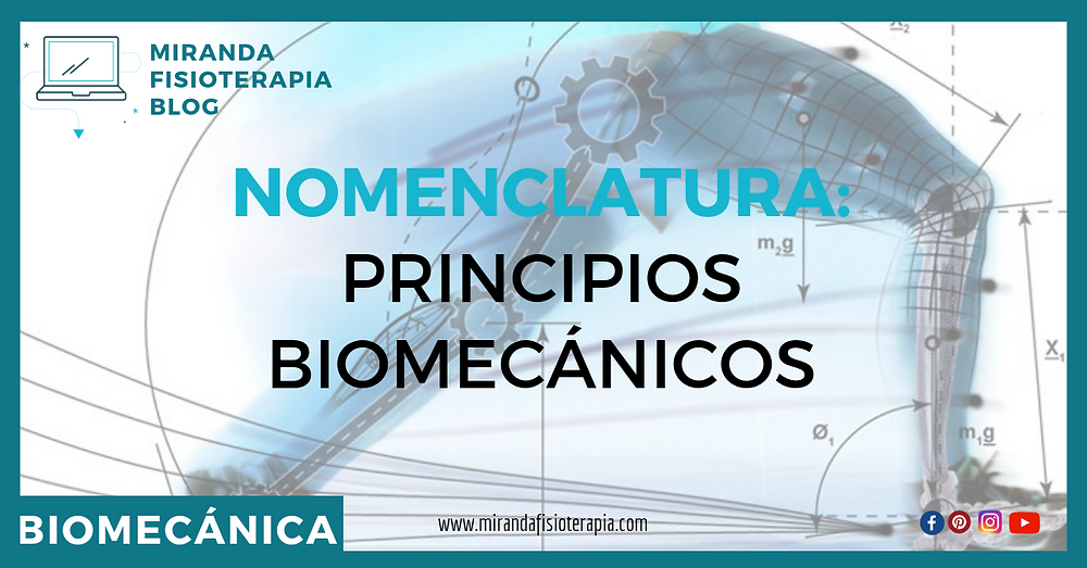 Nomenclatura: principios biomecánicos