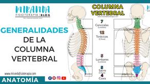 Generalidades de la columna Vertebral (1ra parte)