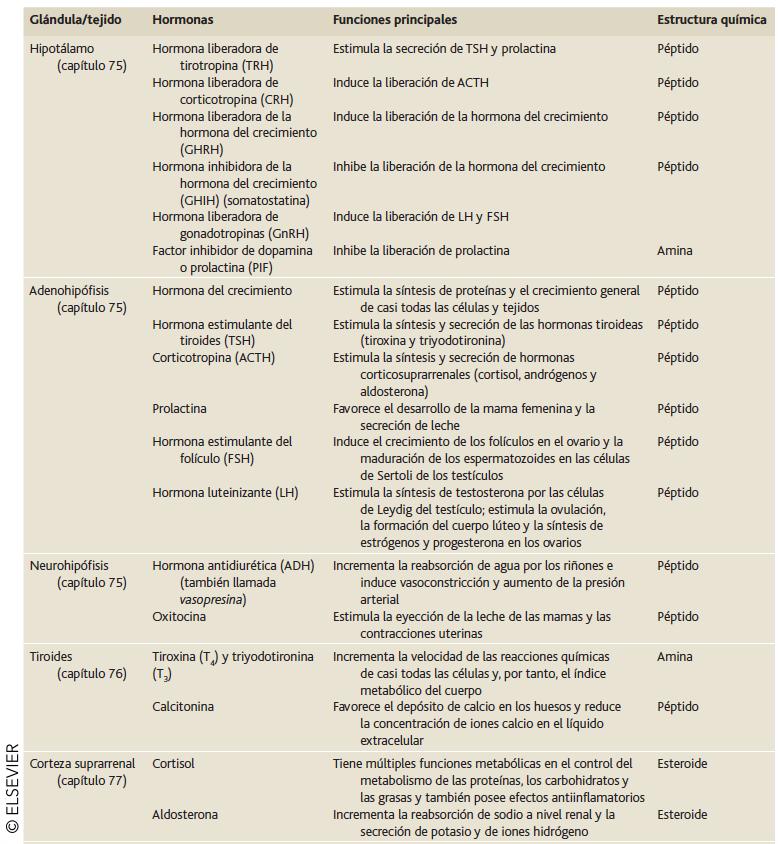 GLÁNDULAS ENDOCRINAS, HORMONAS Y SUS ESTRUCTURAS Y FUNCIONES - Introducción a sistema endocrino