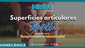 Superficies articulares de la rodilla en función de la flexoextensión y la rotación axial