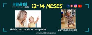 Desarrollo psicomotor: 12 a 14 meses habla con palabras completas y camina solo