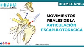 Movimientos reales de la articulación escapulotorácica