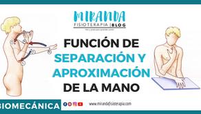 Función de separación y aproximación de la mano