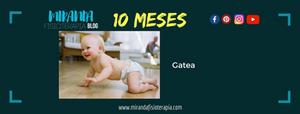 Desarrollo psicomotor: 10 meses gatea