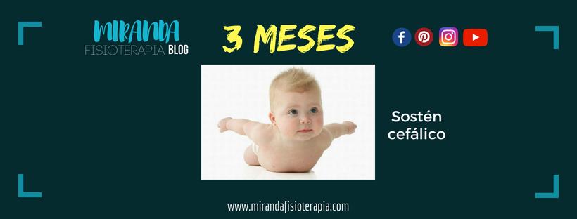 Desarrollo psicomotor: : 3 meses sostén cefálico (sostiene la cabeza)