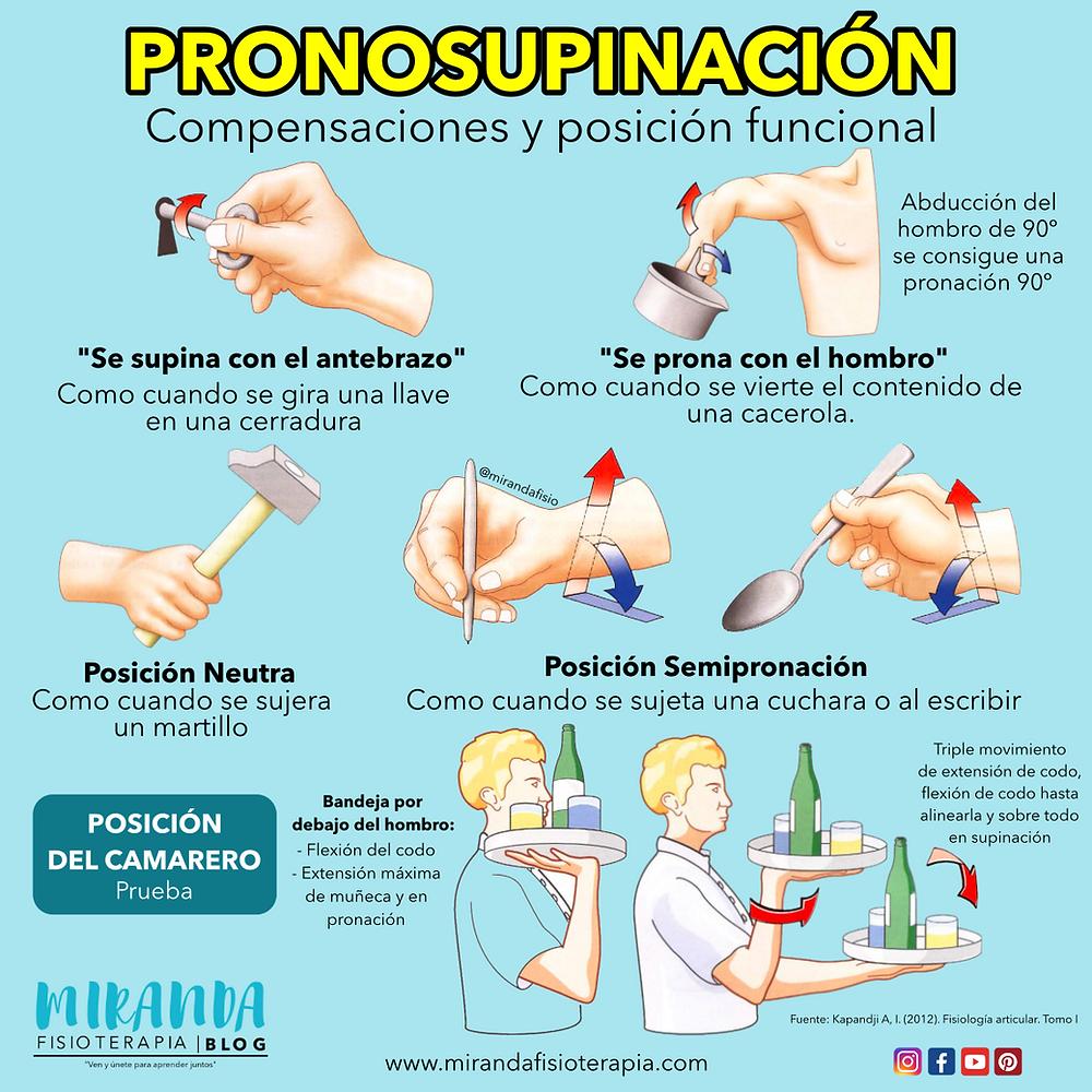 pronosupinación: compensaciones y posición funcional