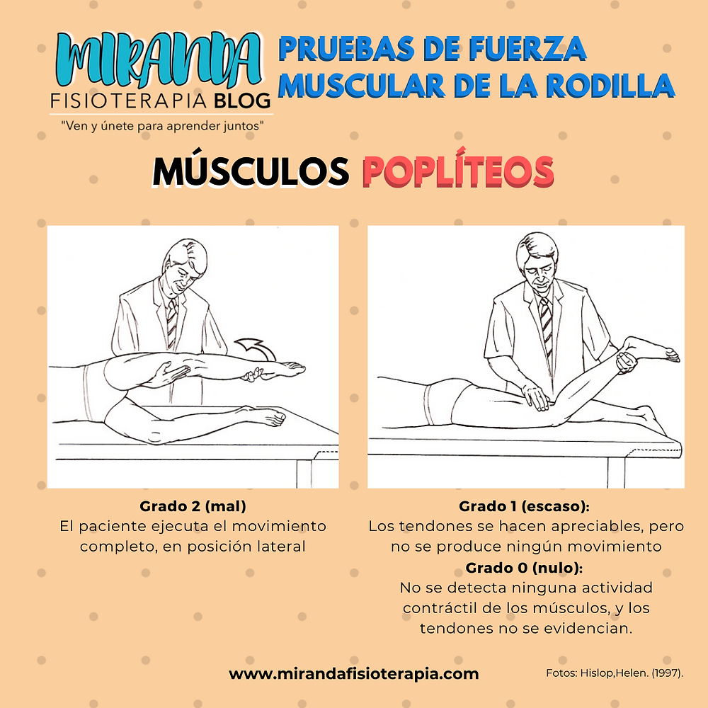 Pruebas de fuerza muscular de la rodilla: músculos poplíteos (Grado 2,1 y 0)