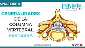 Generalidades de la columna vertebral: Vértebra (2da parte)
