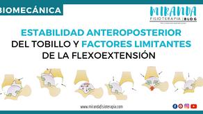 Estabilidad anteroposterior del tobillo y factores limitantes de la flexoextensión