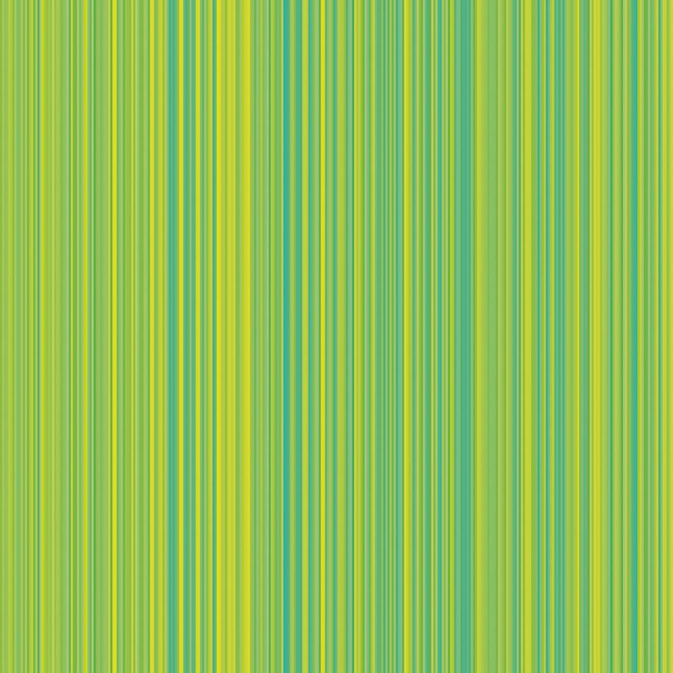 Stripe No. 06