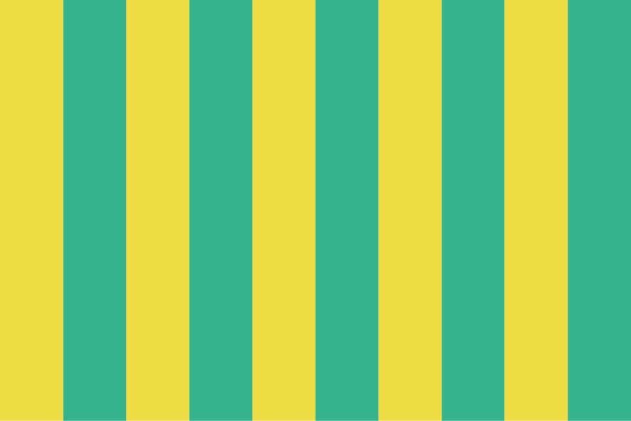Stripes no Stars No. 05