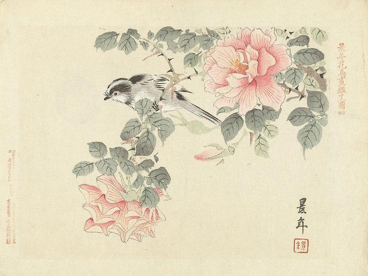 Asian Landscape No. 44
