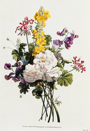 Blumen Illustration No. 01