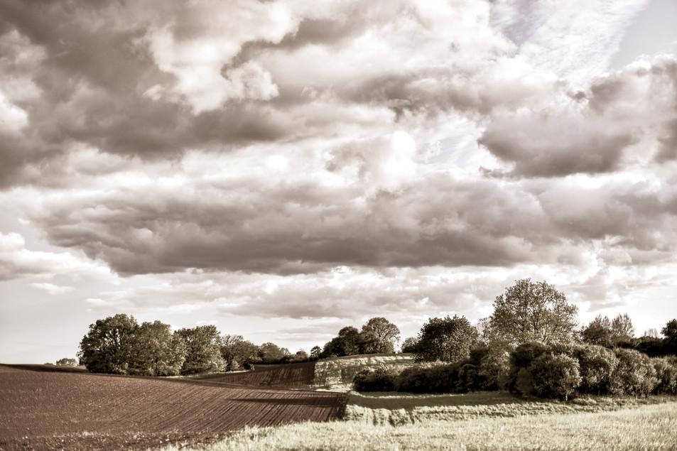 Mecklenburger Land No. 07