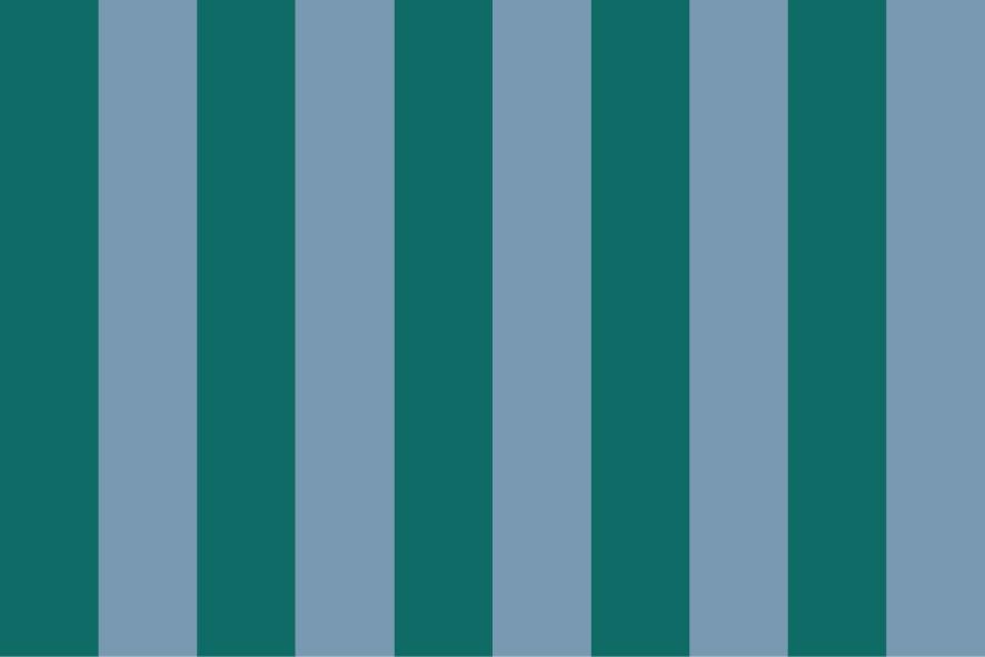Stripes no Stars No. 07