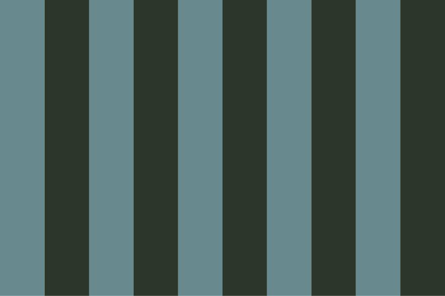 Stripes no Stars No. 11