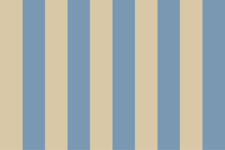 Stripes no Stars No. 06