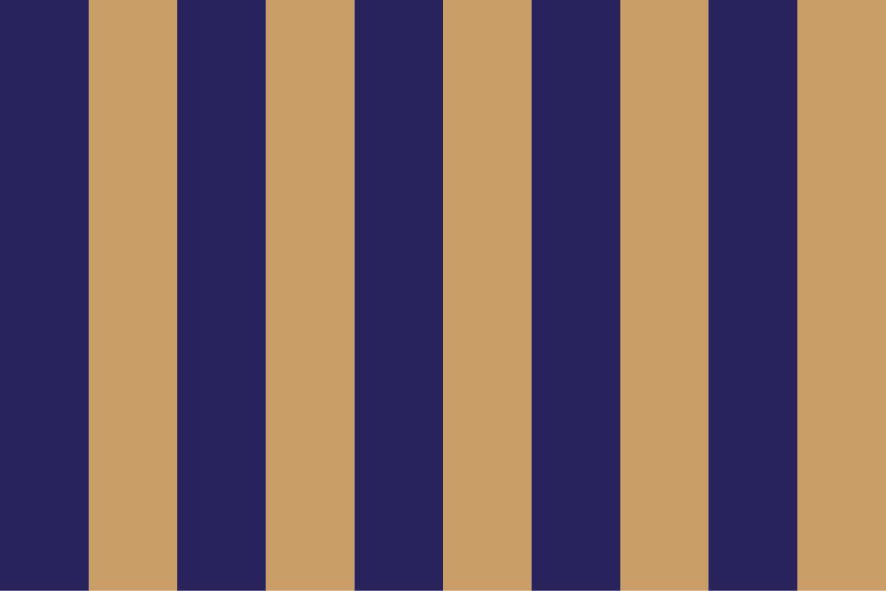 Stripes no Stars No. 01