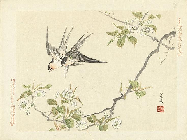 Asian Landscape No. 41