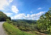 Tuscany 7.jpg