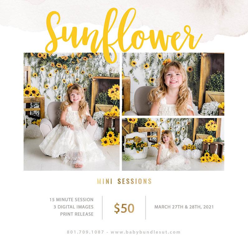 Sunflower Mini