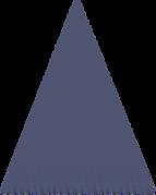 Vector 5.png