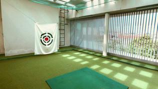 Golf Practice Room