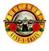GUNS_-_logo_claro.png
