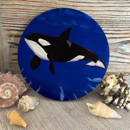 Killer Whale Coaster