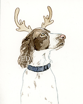 Christmas Springer.png